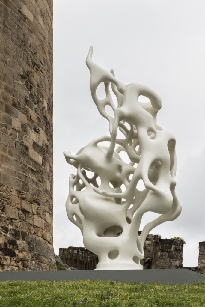 Nick Ervinck, APSAADU, 2012-2013, château de Foix, 2017, Photo © David Huguenin