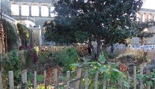 Jardins partagés Arceaux