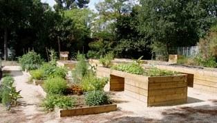 Jardins partagés Roseraie Ste Odile