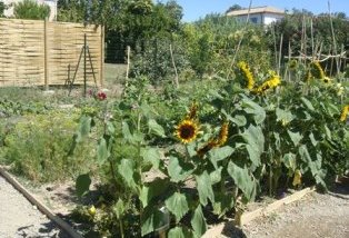 Jardins partagés jardin de Carabotte