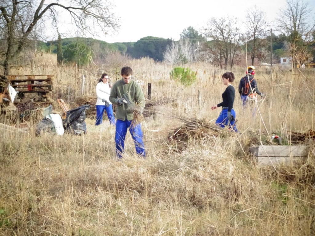 AIGUES MORTES Aménagement du jardin potager du CCAS 2018 (2)