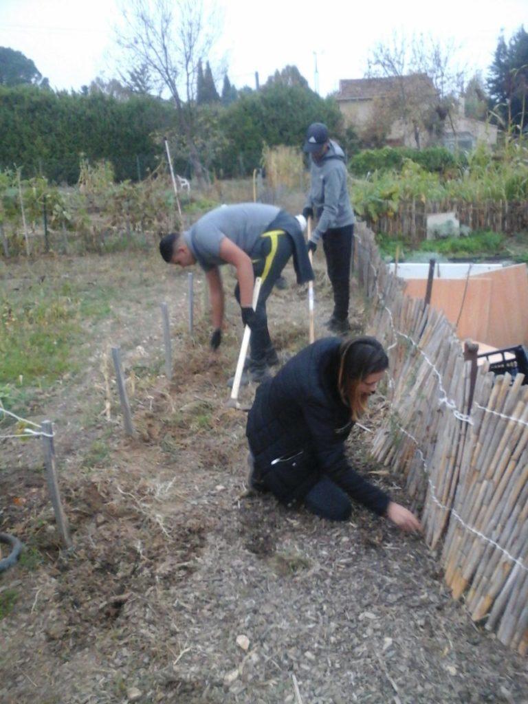 Amenagement des jardins en Cèze 2017 (3)