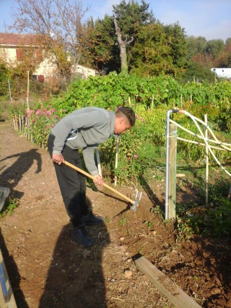 Amenagement des jardins en Cèze 2017 (4)