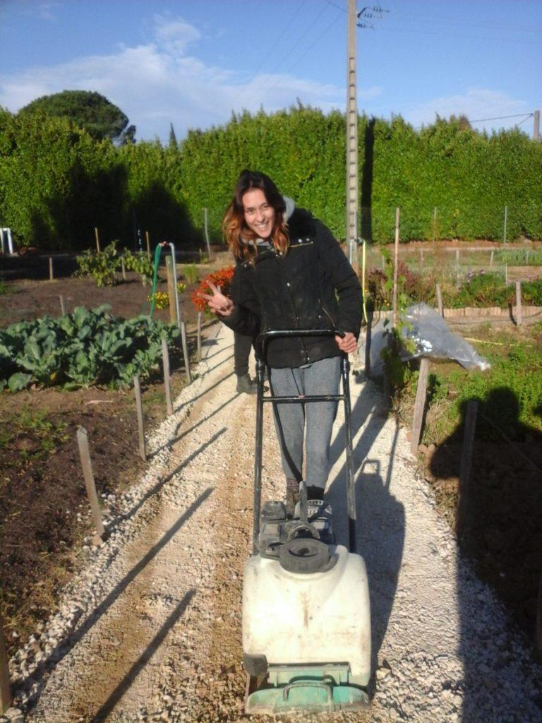 Amenagement des jardins en Cèze 2017 (5)