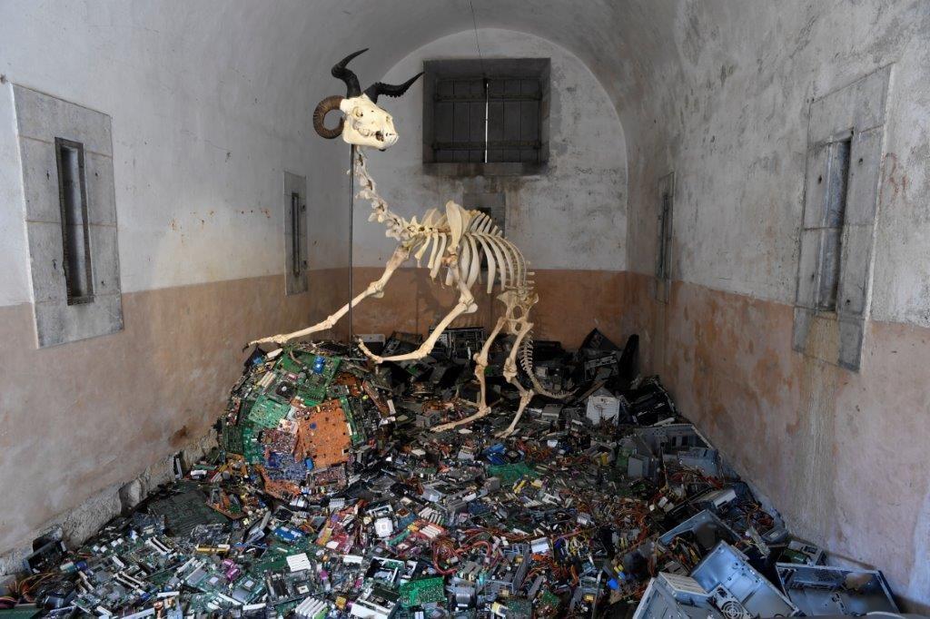 Art Orienté Objet au château fort - Musée Pyrénéen de Lourdes ; Camelus Post-humanus, création IN SITU 2019 ; Courtoisie des artistes ; photo © Luc Jennepin